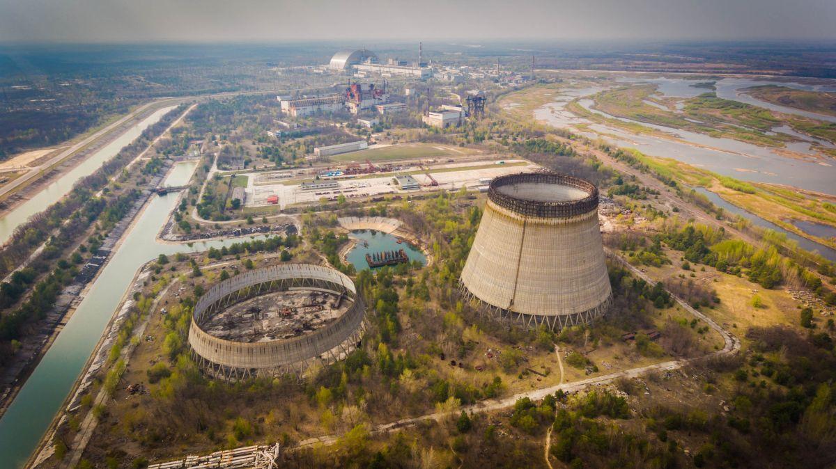 В чернобыльских посевах обнаружили небезопасные уровни радиации