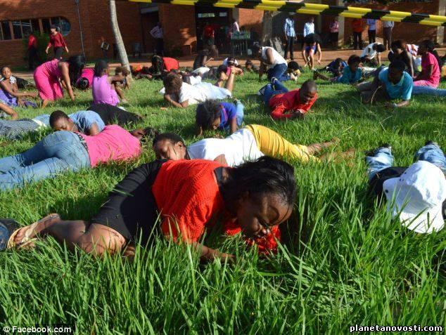 Проповедник призвал паству съесть церковный газон