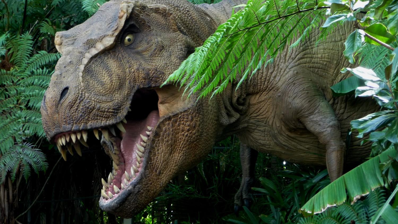 Ученые обнаружили «парк Юрского периода» на побережье Австралии