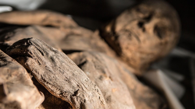 В Судане обнаружен христианский склеп с мумиями